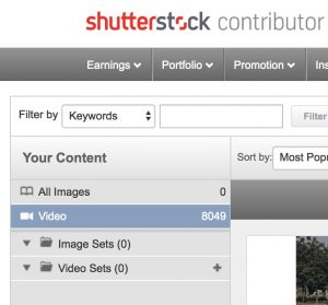 Shutterstock window for changing the stock footage thumbmail